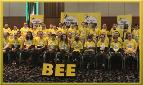 Spelling Bee - St Patricks BNS